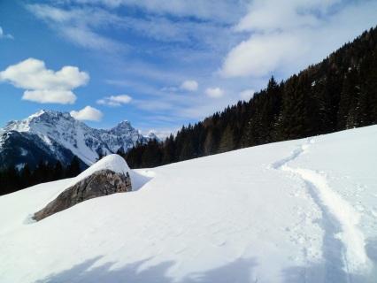 Panorama verso monte Chiadin e monte Lastroni