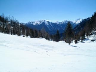 Panorama verso i monti di Sauris (Novarza, Pieltinis,...)