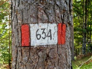SentieroMatteo18