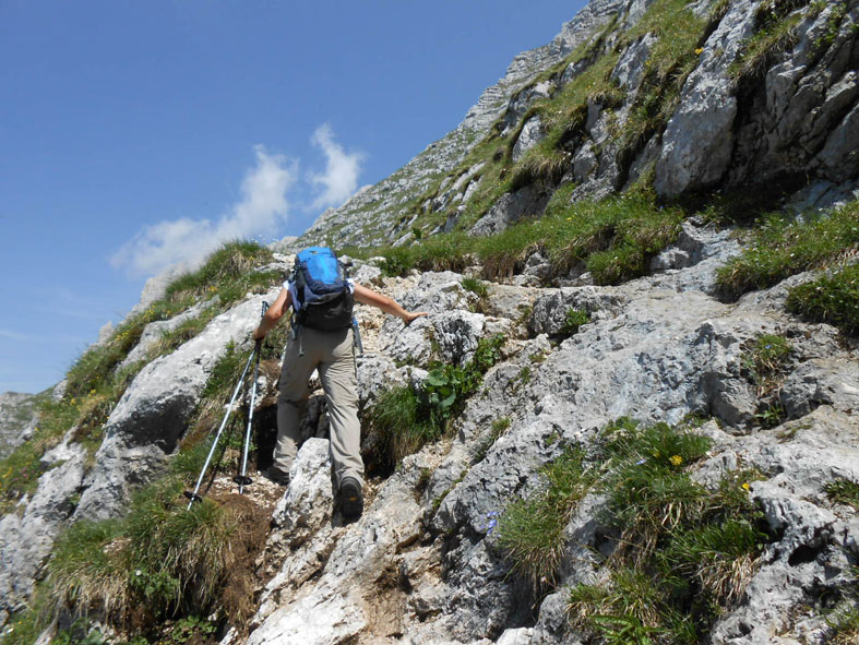 Cima di terrarossa dai piani del montasio supermontifvg for Piani di fattoria del vermont