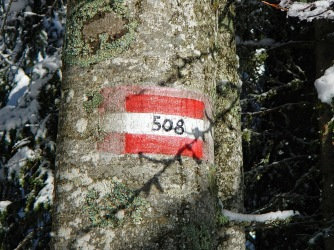 DSCN5259