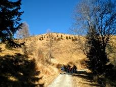 Lungo la strada sul versante meridionale del Monte Tenchia