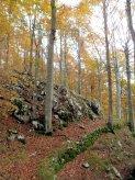 Il sentiero che traversa il versante sud del Monte Nischiuarch