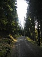 Lungo la strada che si inerpica sul Monte Zovo.