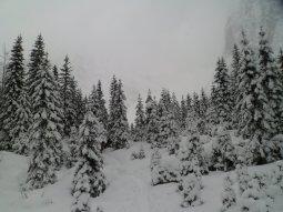 AlpeVecchia13