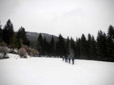 Lungo il versante sud del Monte Cavallar.