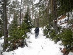 Luungo il sentiero Cai 522 che sale il versanet sud del Monte Cavallar.
