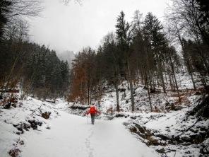 Le prime rampe, molto ripide, della forestale