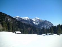 Panorama dalla radura Hinter d'Olbe verso Col Gentile