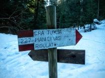 L'incrocio tra la pista forestale che sale dal centro biathlon e la pista CAI 230