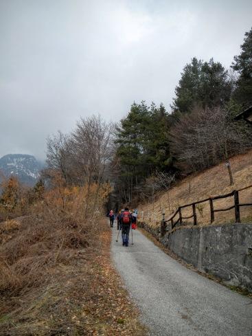 Si sale sulla strada forestale