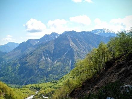 Monte Vualt