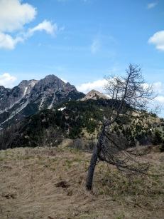 Monti Arvenis e Claupa
