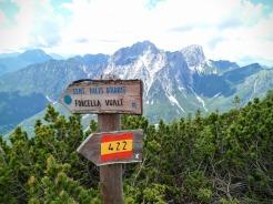 """Indicazioni per sentiero """"Palis d'Arint"""""""