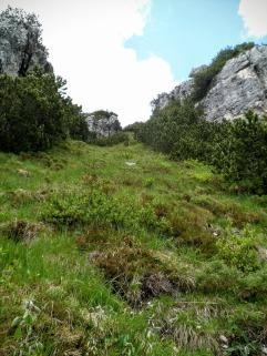 """Al termine di un tratto di ripida discesa sul Sul sentiero """"Palis d'Arint"""""""