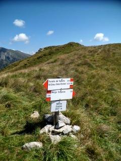 Monte Coston