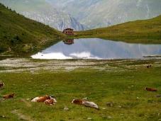 Lago e rifugio