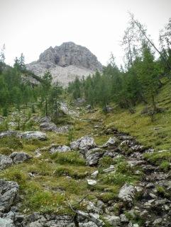 Si sale verso forcella Val di Brica
