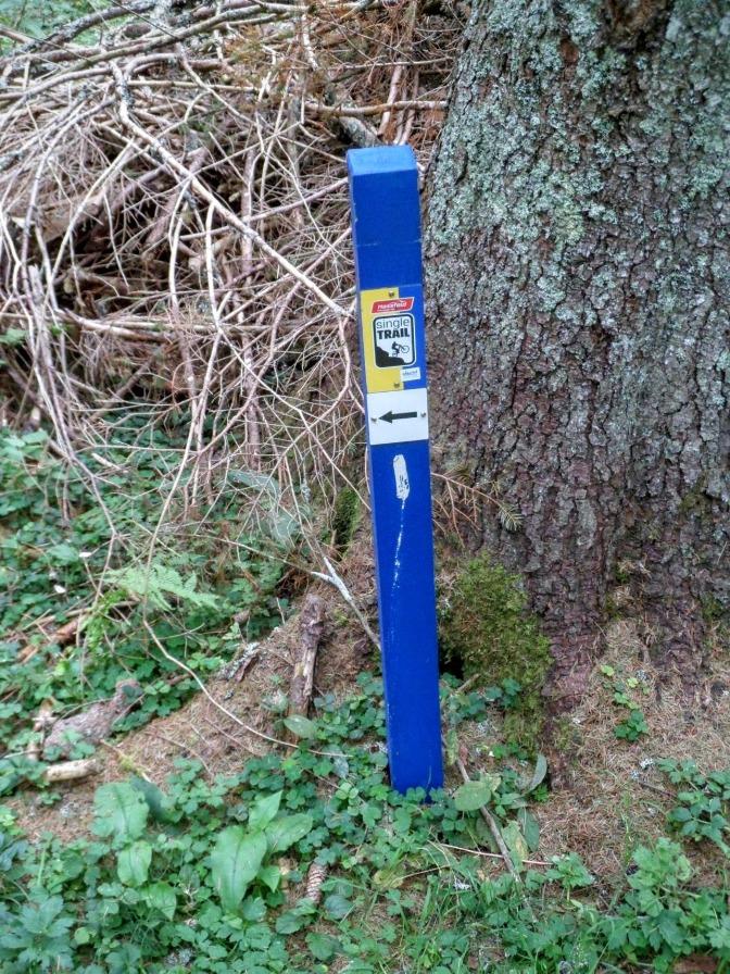 Paletti blu che indicano il sentiero dopo baita Winkel