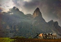 Il Pelmo dal Monte Pena.