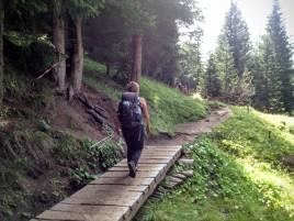 Lungo il sentiero cai 472