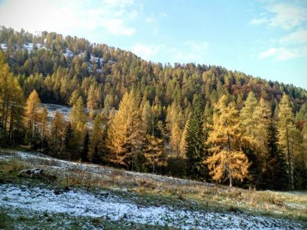Il versante nord del monte Campo