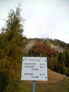 Tabella alla partenza della pista forestale