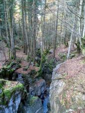 Forra del rio Bordaglia