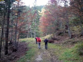Lungo la pista forestale verso il villaggio minerario