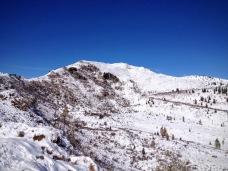 Monte Pieltinis