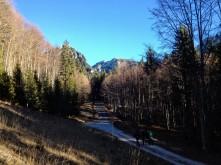 La strada che conduce al Rifugio Vualt.