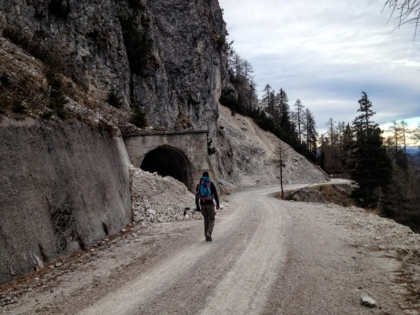 In discesa sulla pista forestale verso la val Saisera