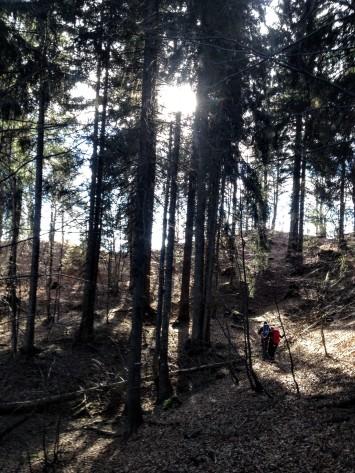 Il sentiero Cai 408a alle pendici del Monte Rivo.