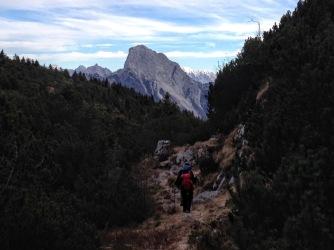 Lungo il 408a. Sullo sfondo il Monte Sernio.