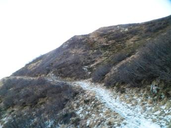 Sulle pendici nordorientali del monte Paularo