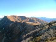 Monte Dimon