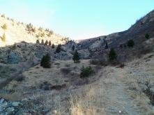 Il sentiero sale verso la sella tra Valsecca e Runch