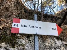 amariana02