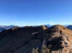 La cresta erbosa del Palon di Lius.