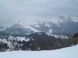 Panorama dal monte Cordin verso nord