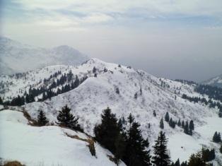 Panorama dal monte Cordin verso ovest