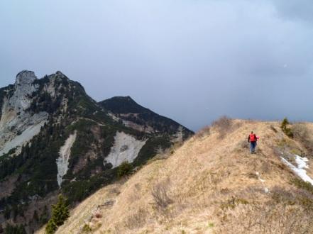 Si torna indietro sulla cresta erbosa del Palon di Lius