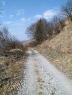 La strada militare che sale il versante sud del monte Stol