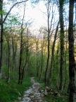 Il ripido sentiero che scende a Kobarid