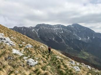 Sull sfondo monte Krn, a destra