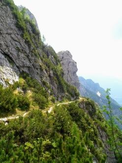 Il sentiero CAI 425 che scende dal bivacco verso la val Alba