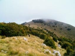 La cresta erbosa verso Vrh Travnika