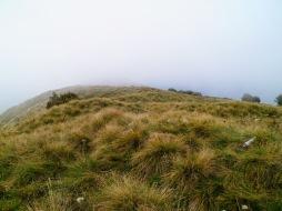 La vetta del Vrh Travnika