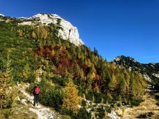 Tratto iniziale del sentiero che sale lungo le pendici della Mala Mojstrovka.