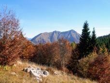 Monte Verzegnis da malga Pezzeit di Sotto
